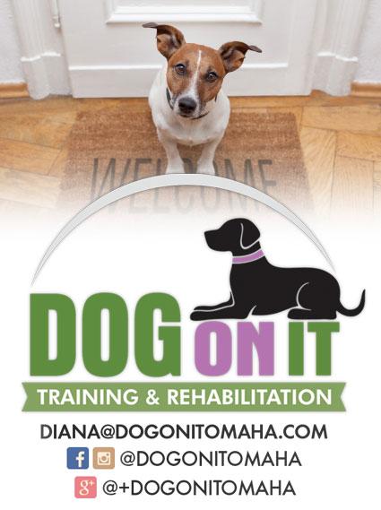 dogonit_comingsoon_logo
